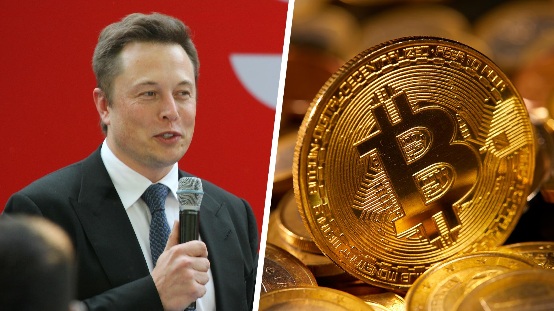 Elon Musk outet sich als Bitcoin-Anhänger – Kurs schießt nach oben